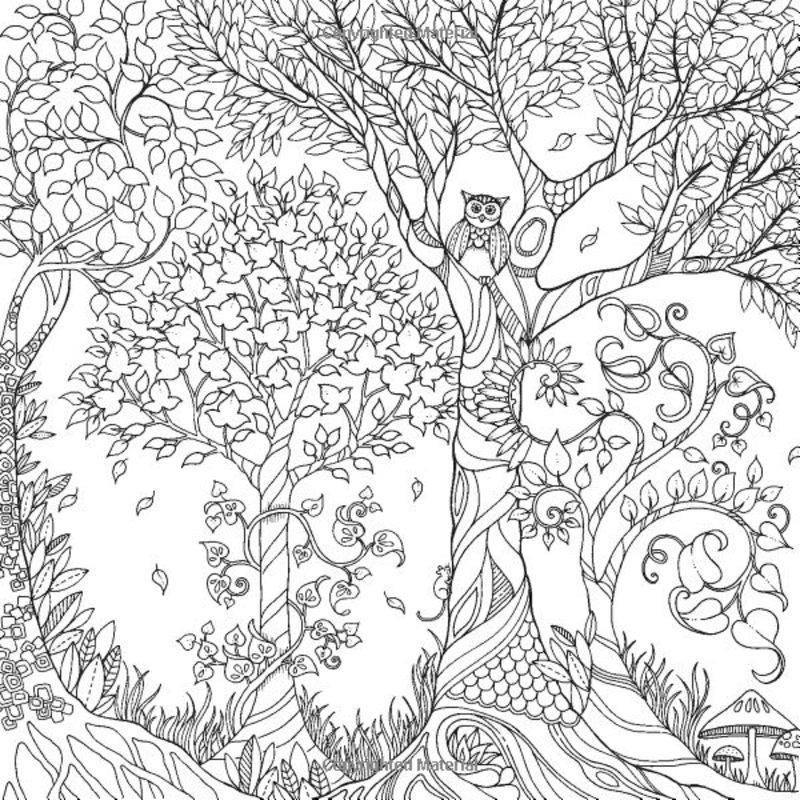 Der Geheime Garten Ausmalbilder Für Erwachsene Kostenlos Zum