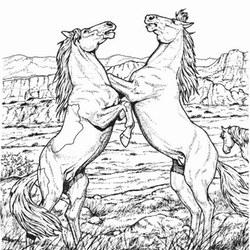 Pferde Ausmalbilder fr Erwachsene kostenlos zum Ausdrucken