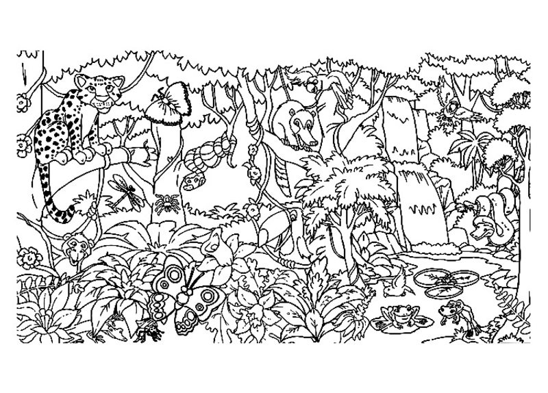 Dschungel Ausmalbilder für Erwachsene kostenlos zum Ausdrucken