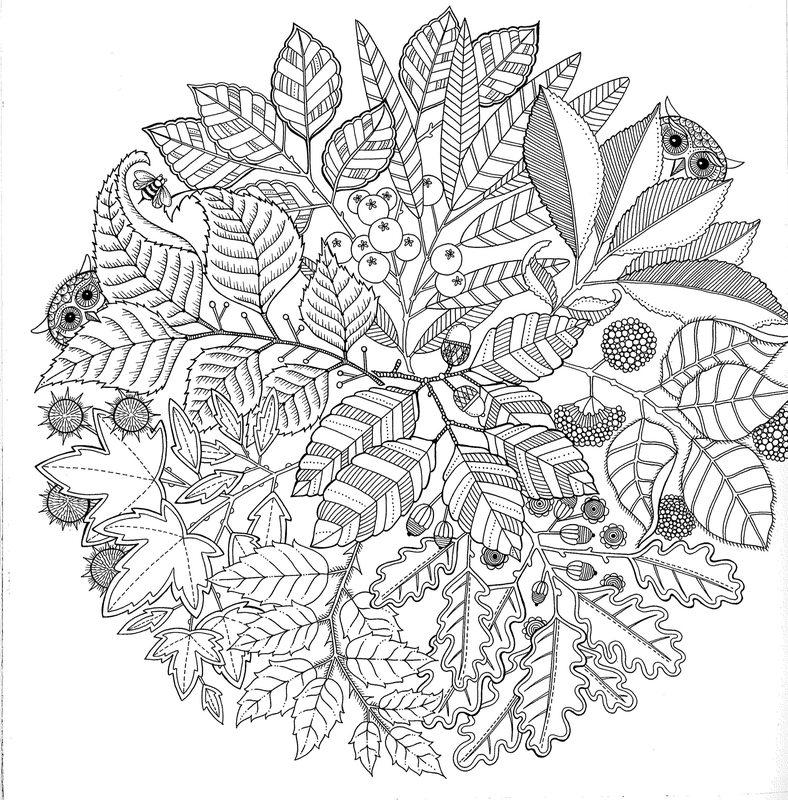 Blumen Ausmalbilder Für Erwachsene Kostenlos Zum Ausdrucken 1