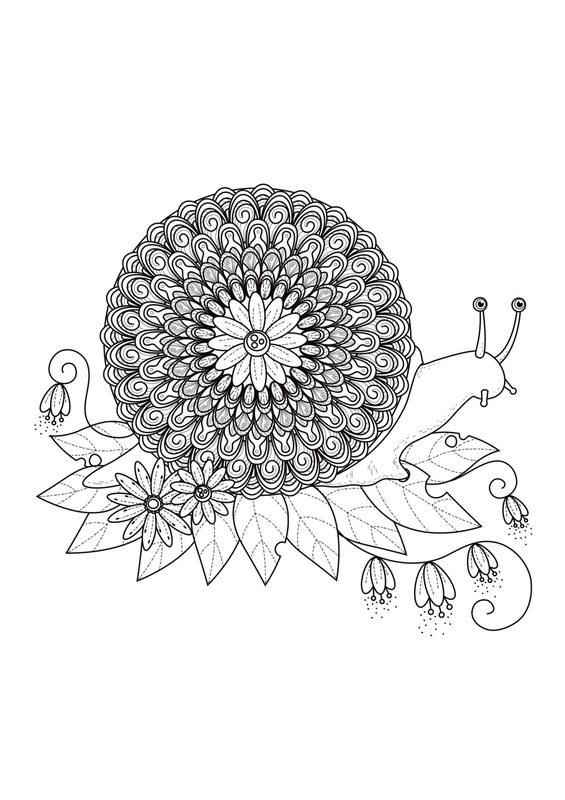 Mandala Ausmalbilder F 252 R Erwachsene Kostenlos Zum