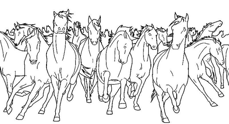 Paarden Kleurplaat Online Kleuren Pferde Ausmalbilder F 252 R Erwachsene Kostenlos Zum