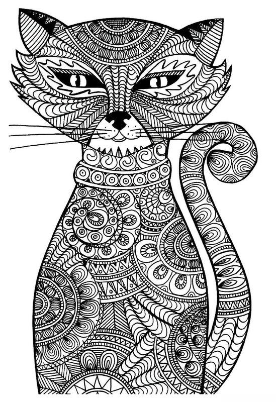 katzen ausmalbilder für erwachsene kostenlos zum