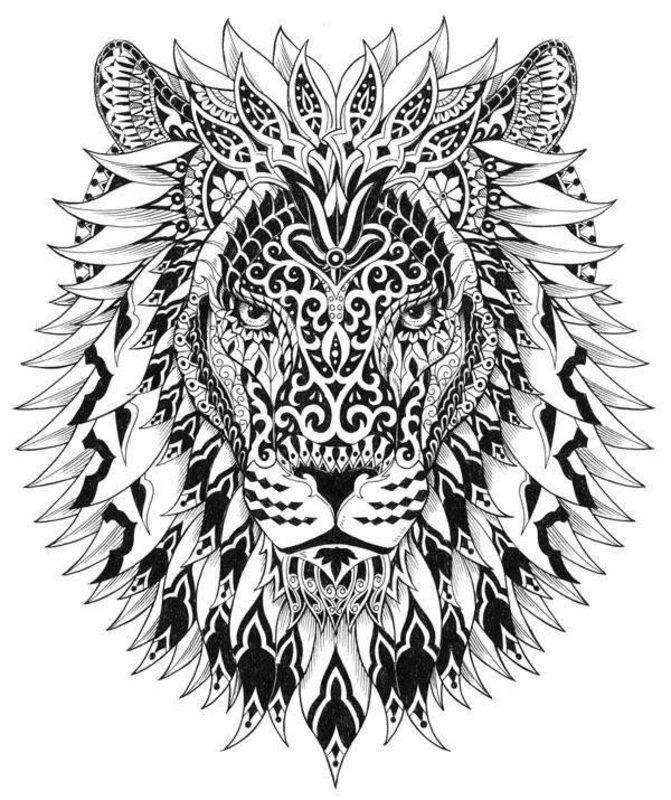 Löwen Ausmalbilder Für Erwachsene Kostenlos Zum Ausdrucken Teil 1