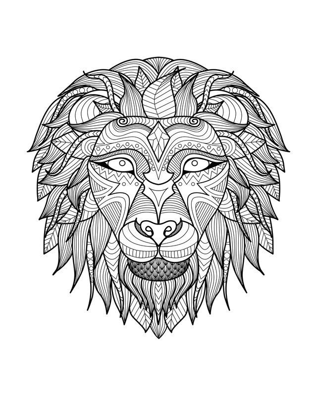 Löwen Ausmalbilder Für Erwachsene Kostenlos Zum Ausdrucken Teil 2