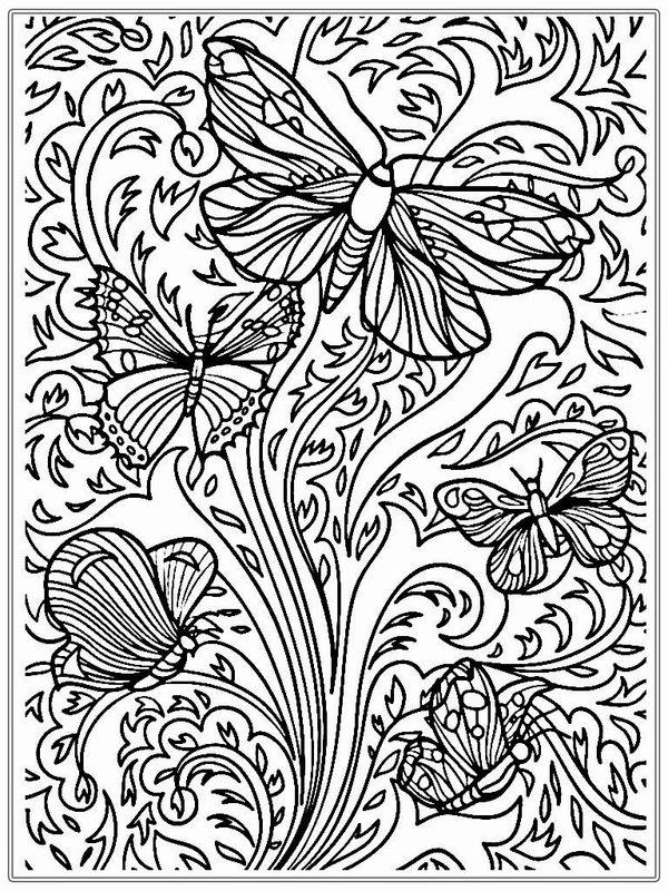 Schmetterlinge Ausmalbilder f r