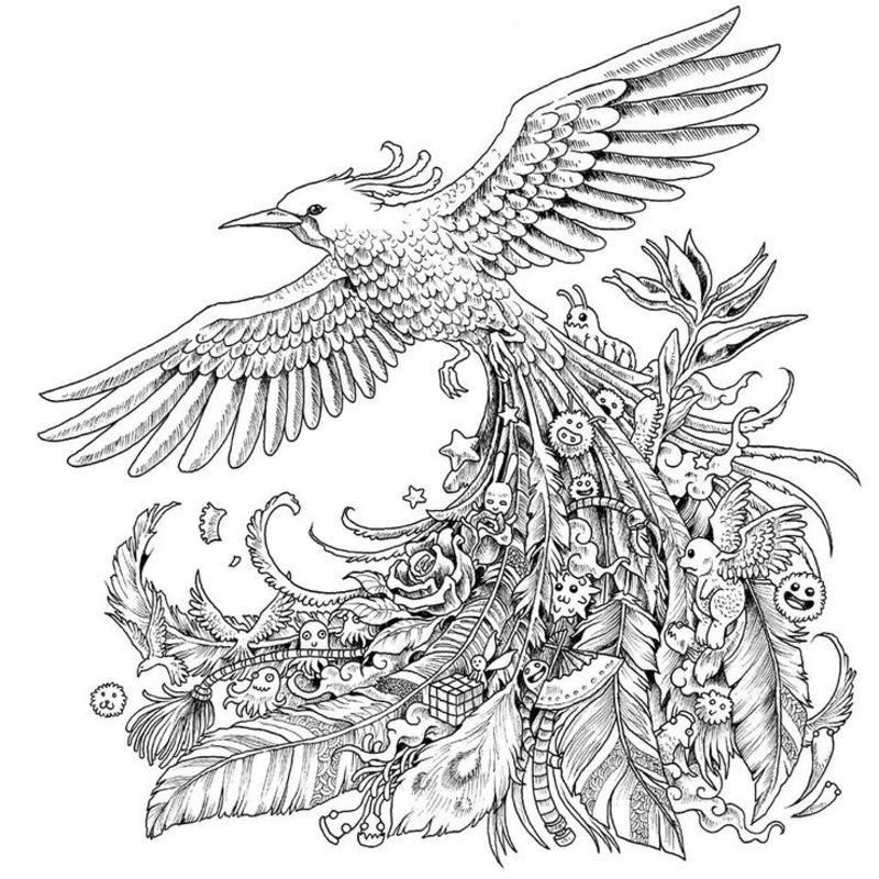 Vögel Ausmalbilder Für Erwachsene Kostenlos Zum Ausdrucken Teil 2