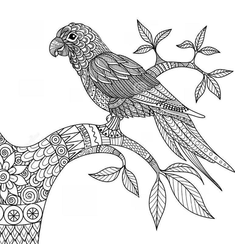 Vögel Ausmalbilder für Erwachsene kostenlos zum Ausdrucken, teil 4