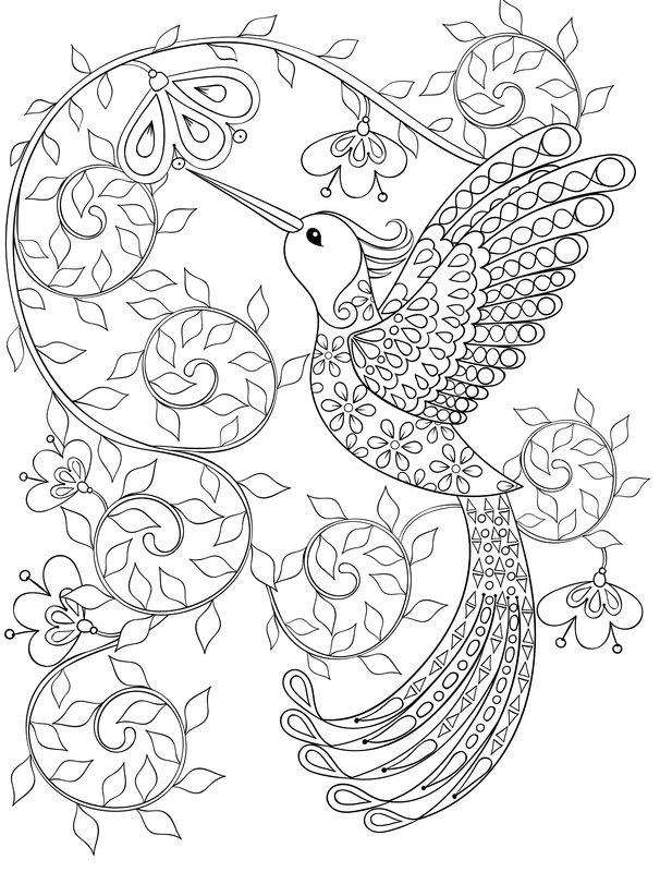 Vögel Ausmalbilder Für Erwachsene Kostenlos Zum Ausdrucken Teil 4