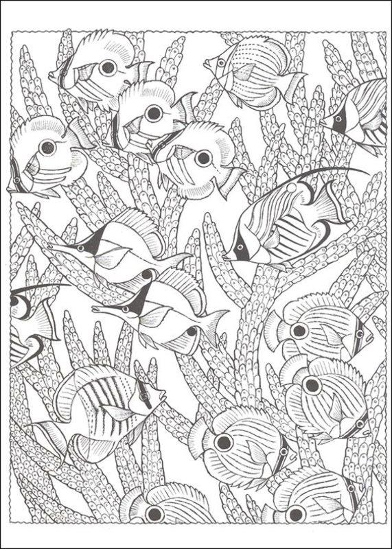 Fische Ausmalbilder Für Erwachsene Kostenlos Zum Ausdrucken Teil 1