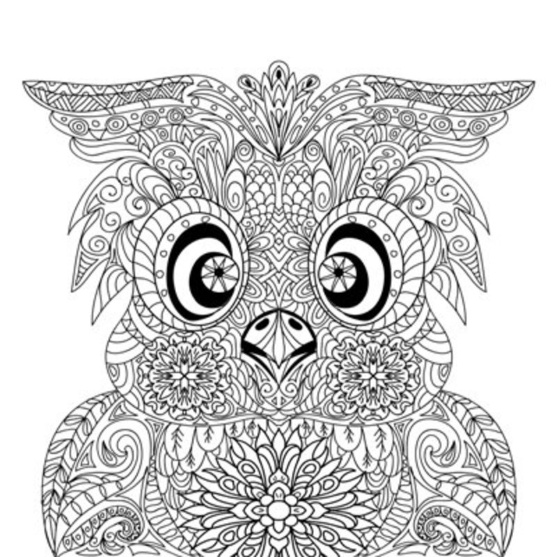 Owl Coloring Page Adult